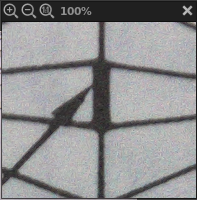 Detail at 100%  f/4.5